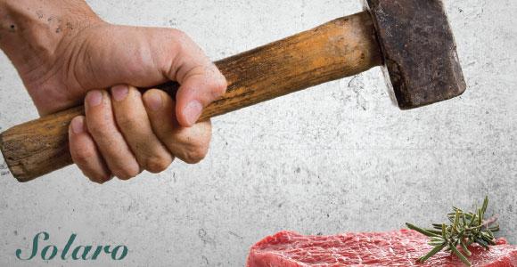 fleischhammer